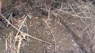 отчеты о рыбалке ярославль