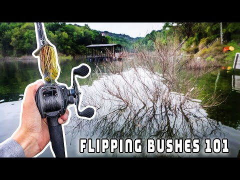 How To Fish FLOODED Bushes For Bass (Flipping Bushes 101)