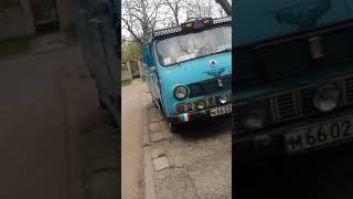 Как живут бездомные собаки в Украине.+ обычный подъезд.