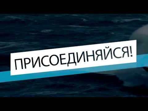 Navygaming.TV - Присоединяйся!