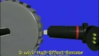 Hammerhead-GT200-Wiring Crossfire 150 Wiring Diagram