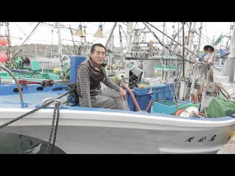 鈴木正男さんから映像が届きました