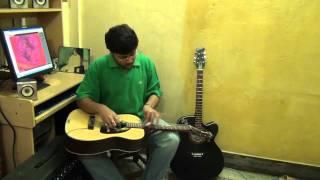Why This Kolaveri D on Electric Hawaiian Steel Guitar By Pramit Das.avi