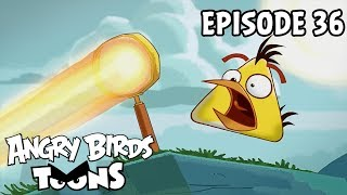 Angry Birds Toons   Fired Up - S1 Ep36