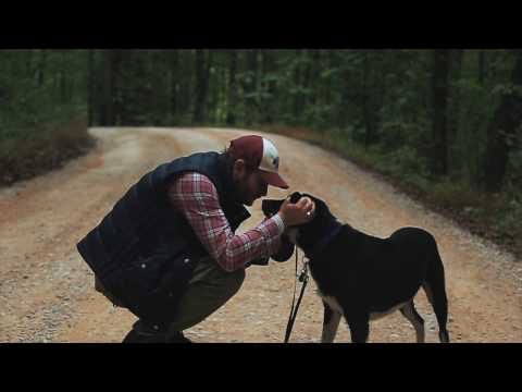 Bobby Gunther Walsh - What does it mean to own a dog?  It means THIS.