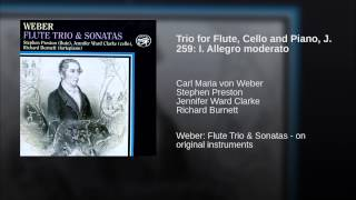 Trio for Flute, Cello and Piano, J. 259: I. Allegro moderato