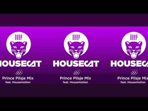 Deep House Cat Show - Prince Pilsje Mix - feat. Housemotion