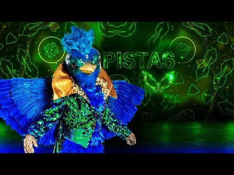 #QuetzalEs Quetzal llega a cambiar la jugada | Pistas | ¿Quién es la Máscara? 2020