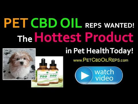Havanese Lovers – Become a Pet CBD Oil Rep – Share the Hottest Product in Pet Healthcare Today!