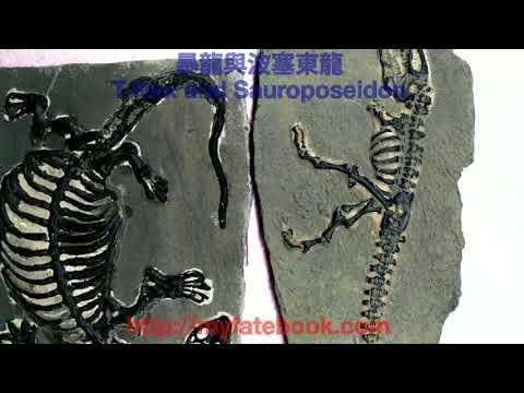 dinosaur bone dating