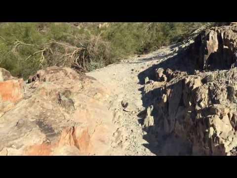 North Mountain Park - trail #44