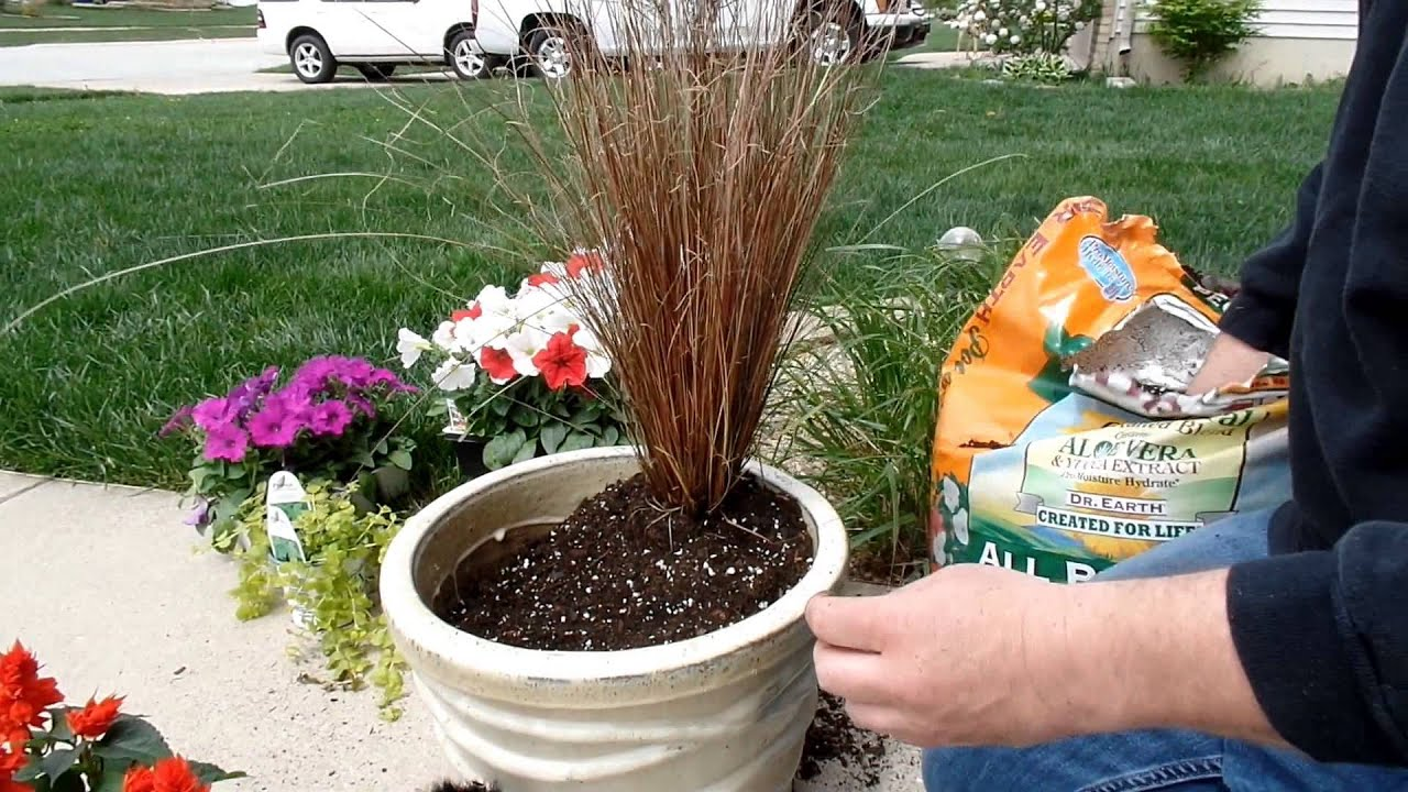 Container Gardening Idea Fun With Flowers Youtube