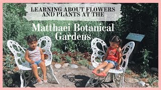 Matthaei Botanical Gardens | Fun With The Family
