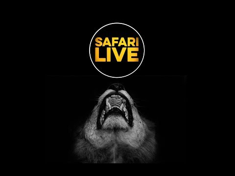 safariLIVE - Sunset Safari - March 22, 2018