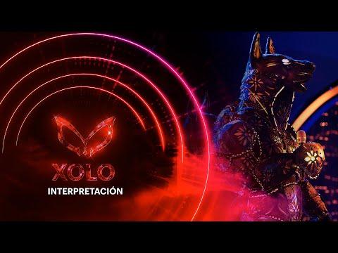 #XoloEs ¡Xolo podría ser rockero! Consuelo Duval no está de acuerdo | ¿Quién es la Máscara? 2020