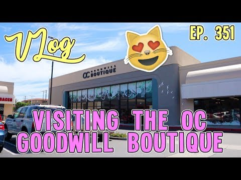 VISITING THE OC GOODWILL BOUTIQUE | VLOG EP. 351