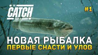 Новая рыбалка Первые снасти и улов The Catch Carp Coarse 1 Первый Взгляд