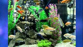 Petsolutions: Aquatop Large Artificial Aquarium Plants