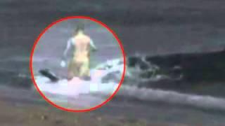 Floride : un énorme alligator croise la route de touristes