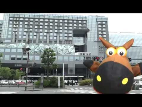 "WONDER KYOTO ""Tourist information center in Kyoto Station"" 京都旅を楽しもう!"