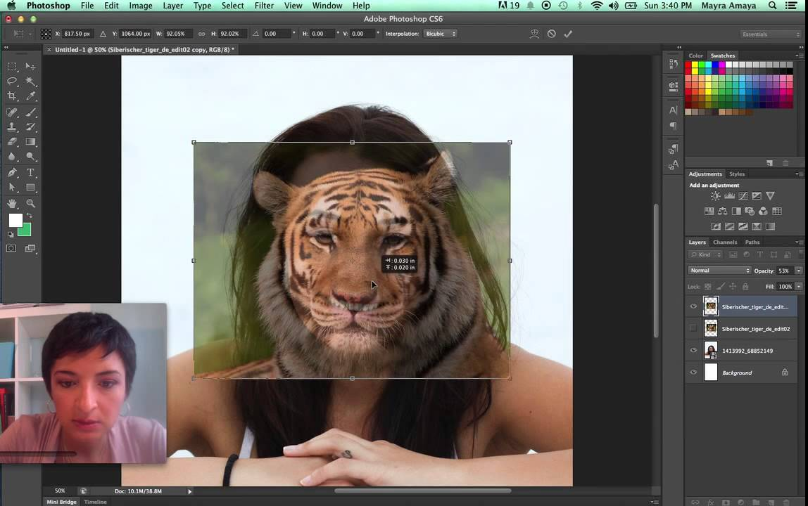 Face merge with animal self portrait photoshop tutorial youtube face merge with animal self portrait photoshop tutorial baditri Image collections