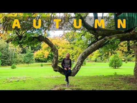 The Beginnings of Autumn in Aberdeenshire