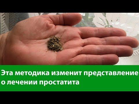 Лечении простатита и женских заболеваний горькой полынью, природным антибиотиком. 🍃 Средство №1
