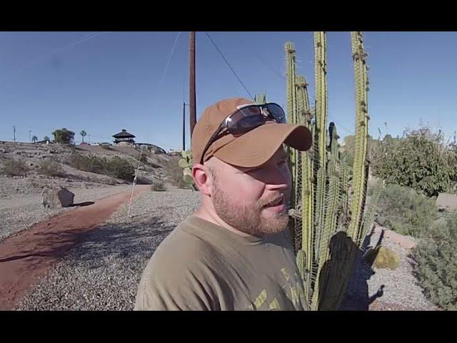 Pilot Knob ~ BLM Land Just Outside of Arizona