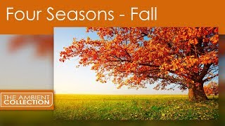 Nature DVD - FOUR SEASONS - FALL with Nature Sounds and Ambient Scenes