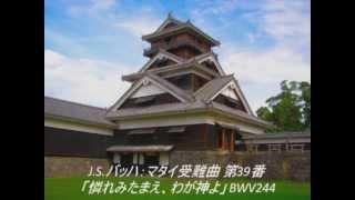 【長時間作業用】バッハ 名曲メドレー 25曲 高音質 thumbnail