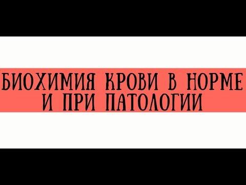 Биохимический анализ крови в норме и при патологии - meduniver.com