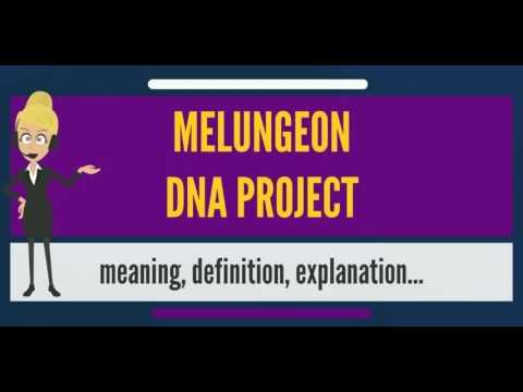 What is MELUNGEON DNA PROJECT? What does MELUNGEON DNA PROJECT mean?