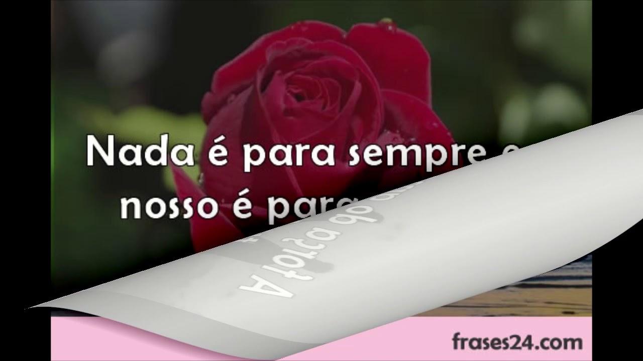 Las Mejores Frases De Amor En Portugues Traducidas Al Espanol