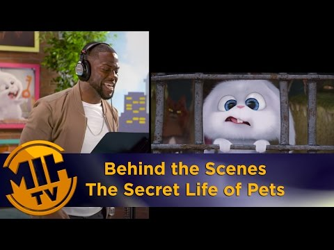 The Secret Life of Pets - Behind the scenes