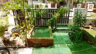 Our New Garden Area, Khon Kaen