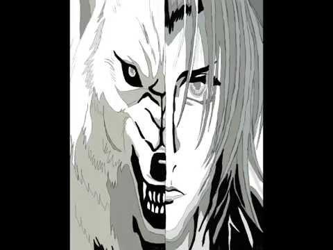 wolfs rain fan stuff
