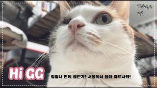 서울로 돈 벌러간 정집사...언제 오나?
