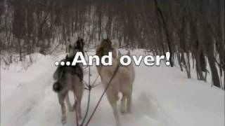 Dogsledding vs. Emotional Trance