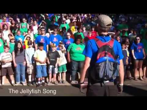 The Jellyfish Song