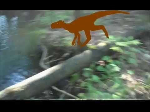 The Coelurosaur (test animation)