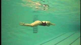 Dolphin kick in swimming