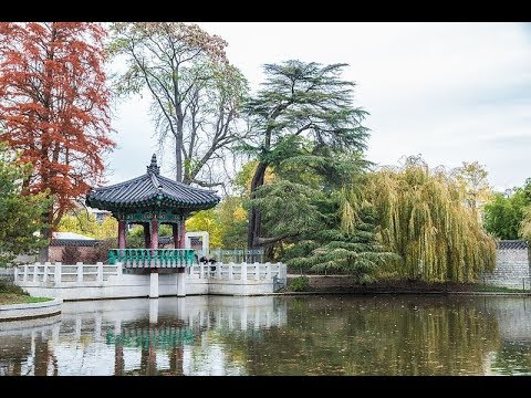 Places To See In Paris France Jardin D Acclimatation Youtube