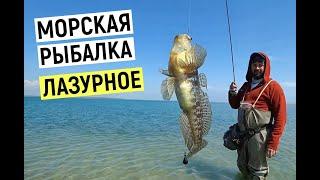 Ловля бычка саргана на яме Лазурное Черное море 2021