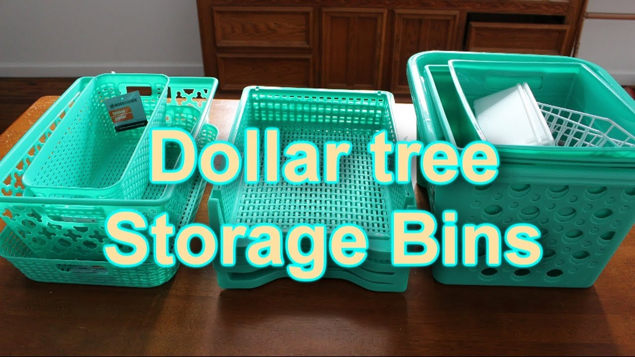 Dollar Tree Haul  Mint Storage Bins