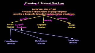 Overview of Divisional Organizational Structures | Organizational Design | MeanThat