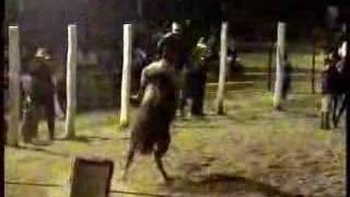 Rodeio Internacional do Herval