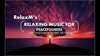 || Relaxing Music | Calm Music | Sleeping Music | Sleep Music | Meditation Music | Relaxing Music ||