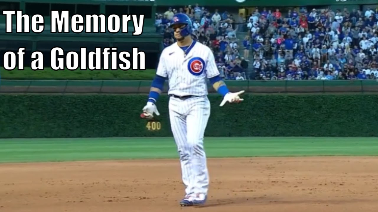 """MLB """"You Have a Terrible Memory!"""" Moments"""