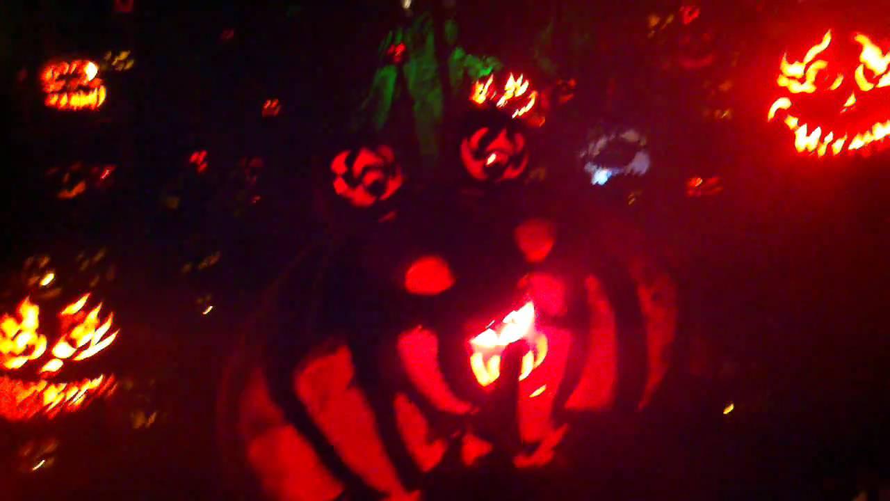 jack 'o lantern spectacular at roger williams park - youtube