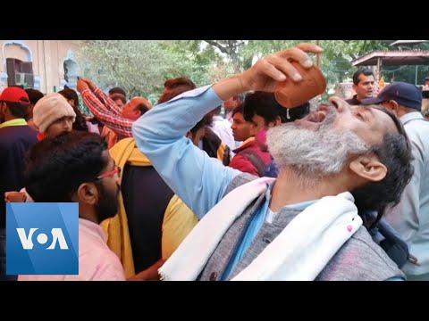 Hindu Activists Drink Cow Urine Amid Coronavirus Outbreak